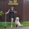 Весенняя семерка в Королевском Дворе! - последнее сообщение от natka