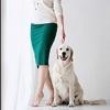 Собака захромала - последнее сообщение от ДЕлена и мечта моя Astra